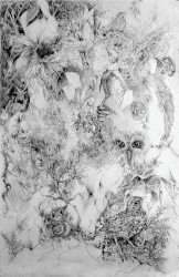 Fledgling I -  2007
