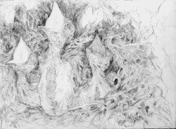 Collateral Damage #3 -  2007