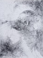Cirlcing -  2008
