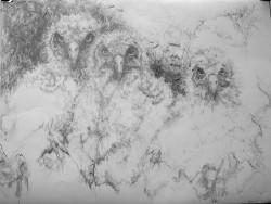 """Trio -   2008 Graphite - 22"""" x 30"""""""