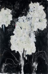 White Gentian - 2011