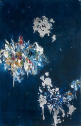 Blue Midnight    2011