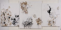 Gentian Triptych  -  2011