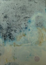 Whitewash -   2012