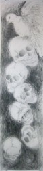 """Untitled Skulls and Winged Dove I -  2013 Graphite -  44"""" x 11 1/2 """""""