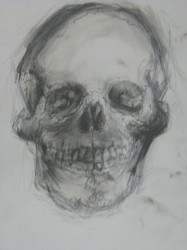 Untitled  Skull    2013